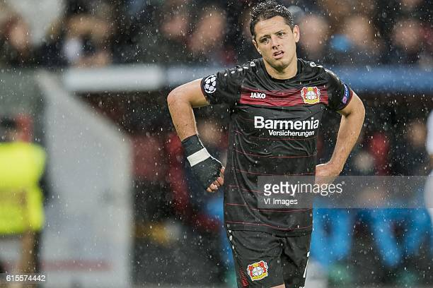 Javier Hernandez of Bayer 04 Leverkusenduring the Champions League group E match between Bayer Leverkusen and Tottenham Hotspur on October 18 2016 at...