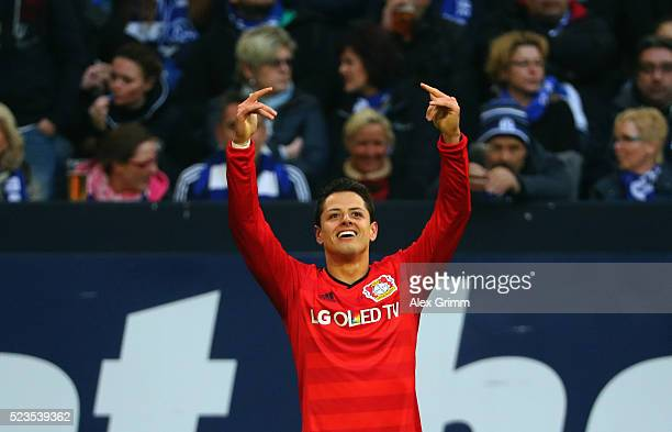 Javier Hernandez of Leverkusen celebrates his team's third goal during the Bundesliga match between FC Schalke 04 and Bayer Leverkusen at...