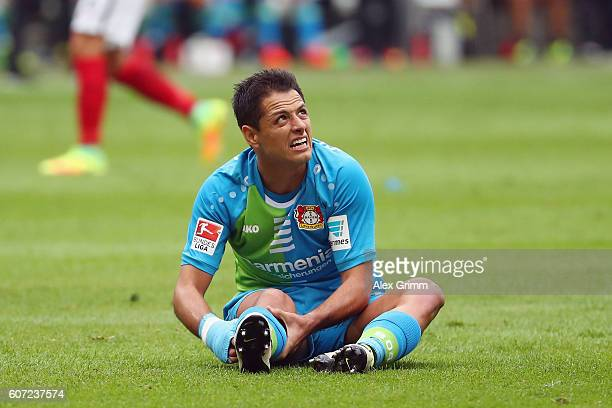 Javier Hernandez of Leverkusen reacts during the Bundesliga match between Eintracht Frankfurt and Bayer 04 Leverkusen at CommerzbankArena on...