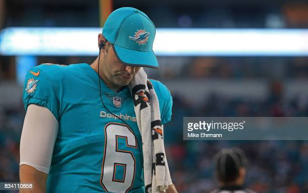 Jay Cutler of the Miami Dolphins looks on during a preseason game against the Baltimore Ravens at Hard Rock Stadium on August 17 2017 in Miami...
