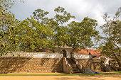 jaya sri maha bodhi temple anuradhapura