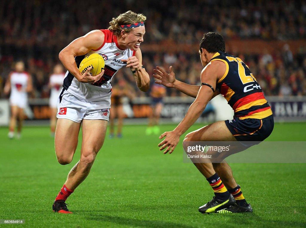 AFL Rd 8 - Adelaide v Melbourne : News Photo