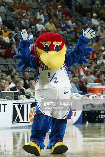 Jayhawks mascot entertains the audience during the Big XII Championship Quarterfinals game between he Iowa State University Cyclones and the...