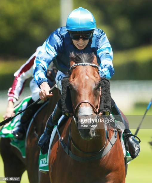 Jean Van Overmeire rides Mate Story to win race 1 on Apollo Stakes Day at Royal Randwick Racecourse on February 17 2018 in Sydney Australia