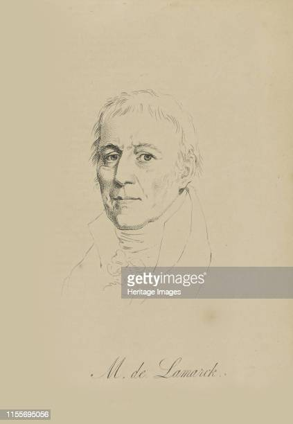 JeanBaptiste Pierre Antoine de Monet Chevalier de Lamarck circa 1810 Private Collection Artist Anonymous