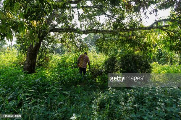 JeanLouis Kell a UPC militant stands by one of the mass graves where the nationalists were buried in Ekite on December 11 2019 Parts of Cameroon were...