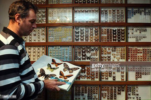 JeanMarc Sor a French entomologist who crossed the globe to take pictures of a giant rare butterfly on an Indonesian island shows a book displaying...