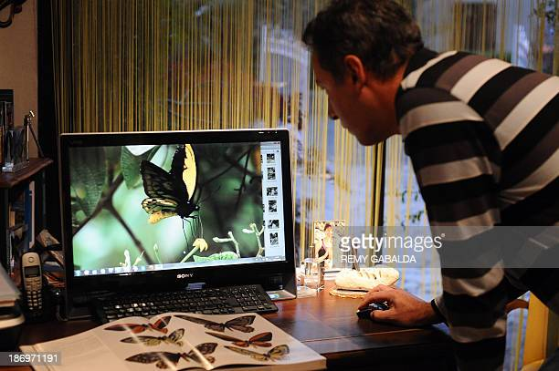 JeanMarc Sor a French entomologist who crossed the globe to take pictures of a giant rare butterfly on an Indonesian island looks at a picture of...