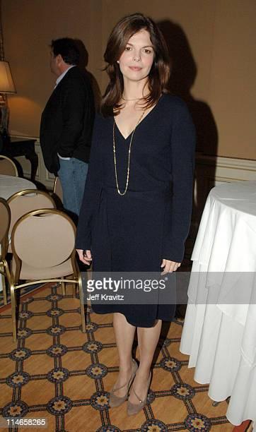 Jeanne Tripplehorn during 2006 TCA HBO Networks - Presentation at Ritz Carlton Hotel, Pavilion Room in Pasadena, California, United States.