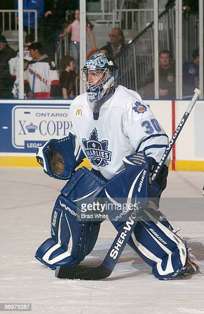 JeanSebastien Aubin of the Toronto Marlies tends goal against the Peoria Rivermen at Ricoh Coliseum on February 3 2006 in Toronto Ontario Canada The...