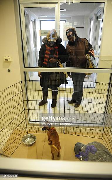 'Jeb' a Chihuahua dog meets with its new owner Eunice Stanley accompanied by her daughter Lauren at a Manhattan ASPCA after 15 Chihuahuas were flown...