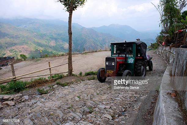 A jeep carrying plucked tea leaves moves to Makaibari tea factory Set up in 1859 off Kurseong in the Darjeeling hills the Makaibari estate is the...