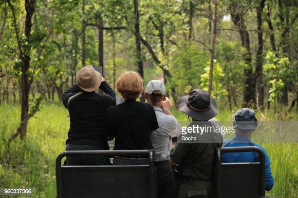 jeep safari in chitwan national park - national park stock pictures, royalty-free photos & images