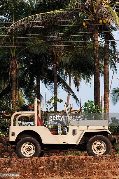 jeep wrangler - hot indian model stock pictures, royalty-free photos & images