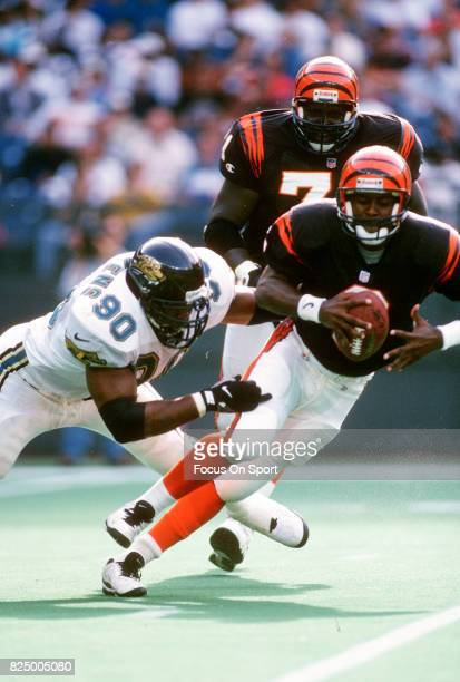 Jeff Blake of the Cincinnati Bengals gets sacked by Tony Brackens of the Jacksonville Jaguars during an NFL football game October 27 1996 at...