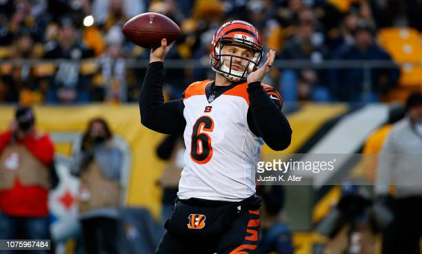 Jeff Driskel of the Cincinnati Bengals drops back to pass in the first quarter during the game against the Pittsburgh Steelers at Heinz Field on...