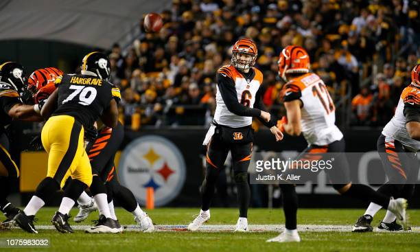 Jeff Driskel of the Cincinnati Bengals drops back to pass in the first half during the game against the Pittsburgh Steelers at Heinz Field on...