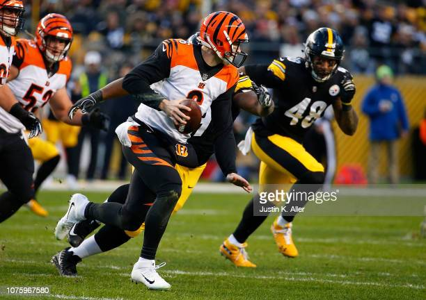 Jeff Driskel of the Cincinnati Bengals scrambles out of the pocket under pressure from Javon Hargrave of the Pittsburgh Steelers in the first quarter...