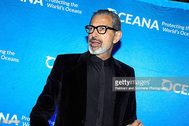 Jeff Goldblum attends the 2016 Oceana New York City Gala at Four Seasons Restaurant on April 19 20