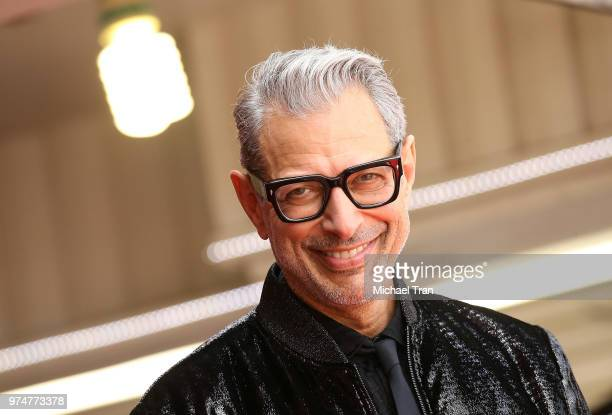 Jeff Goldblum attends the ceremony honoring him with a Star on The Hollywood Walk of Fame held on June 14 2018 in Hollywood California