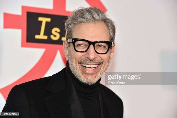 Jeff Goldblum attends the Isle Of Dogs New York Screening at The Metropolitan Museum of Art on March 20 2018 in New York City