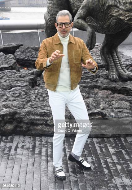 Jeff Goldblum attends the 'Jurassic World Fallen Kingdom' photocall at London Bridge on May 24 2018 in London England