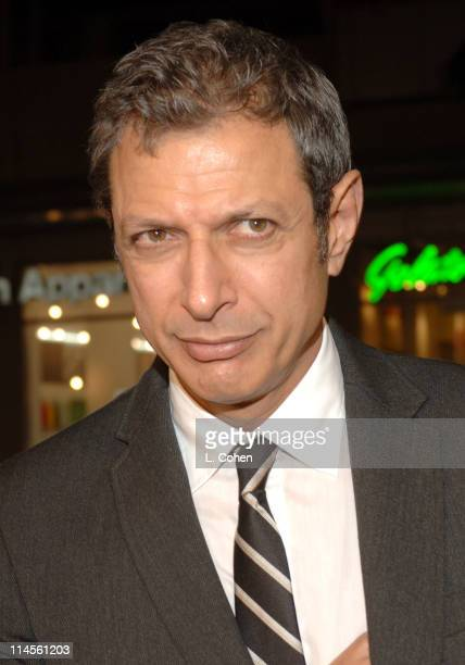 Jeff Goldblum during 'Man of the Year' Los Angeles Premiere Red Carpet at Mann's Chinese Theater in Hollywood California United States