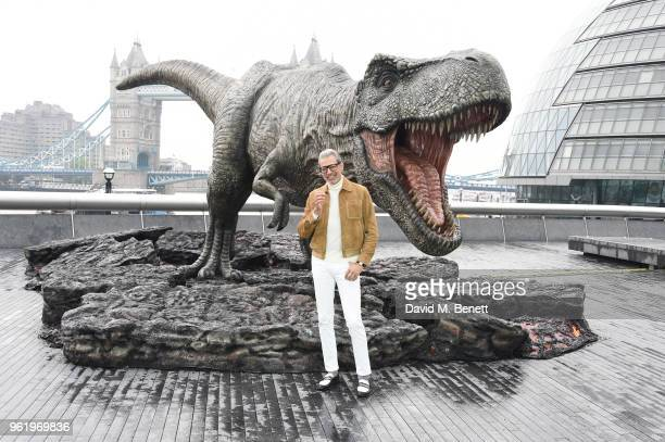 Jeff Goldblum poses during the 'Jurassic World Fallen Kingdom' photocall at London Bridge on May 24 2018 in London England