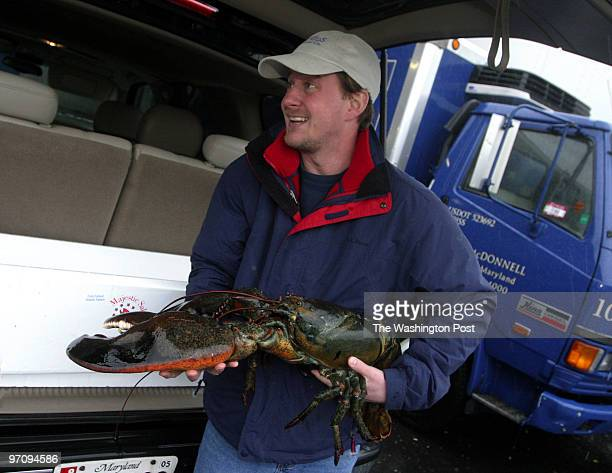 Jeff Grolig of River Falls Seafood holds an 18 pound lobster that a woman purchased for $15000 She plans to have it shipped to Cape Cod and released...