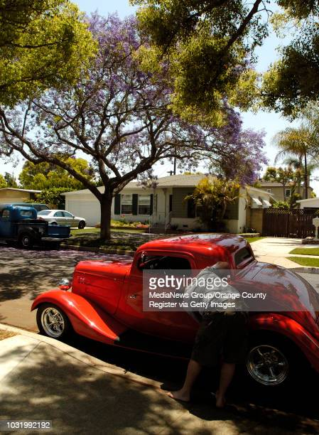 BEACH Jeff Martin washes his father's 1934 Ford 3 window coupe as he tries to keep it clear of Jacaranda flowers in Long Beach Calif on May 23 2007...