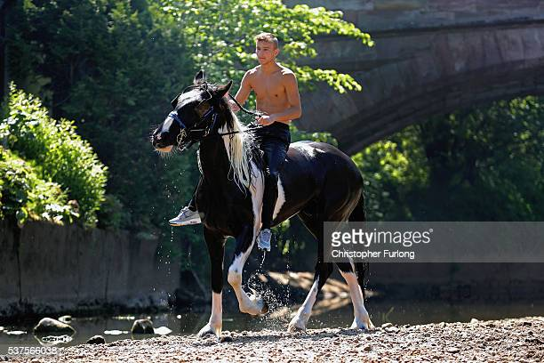 Jeff Nesham rides Bentley through the River Eden during the Appleby Horse Fair on June 2 2016 in Appleby England The Appleby Horse Fair has existed...