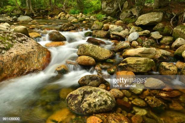 jefferson brook - brook mitchell stockfoto's en -beelden