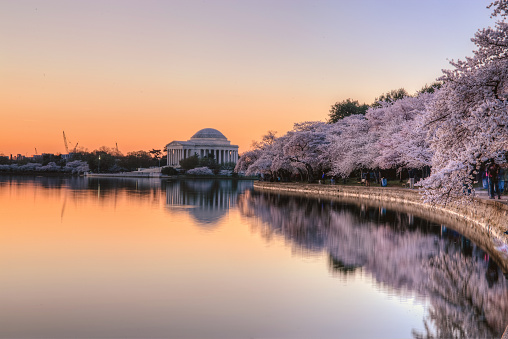 Jefferson Memorial sunrise - gettyimageskorea