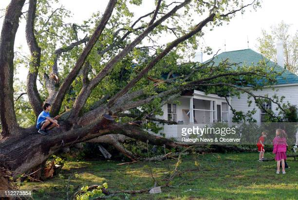 Jeffrey Tan left sits on the tree that fell on his greatgrandmother Jessie Rogers' house on Sparrow Pond Lane during the storm that hit in Raleigh...