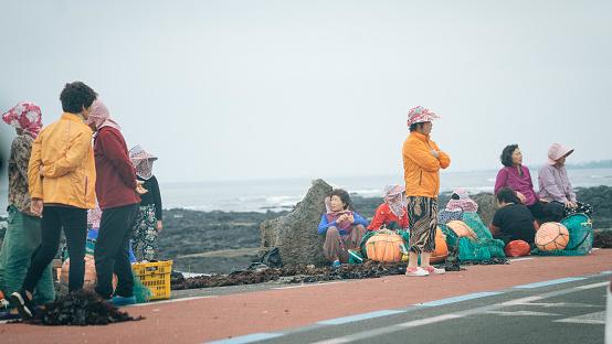 Jeju Island sun drying seaweed - gettyimageskorea