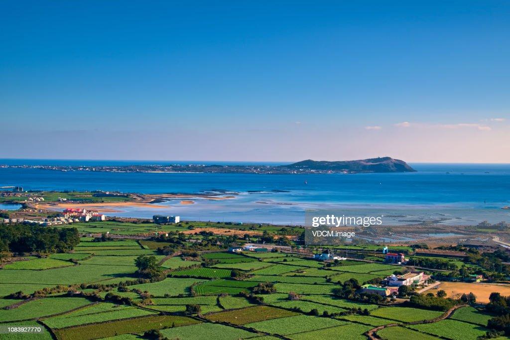 Jeju's Fields and Seas VD702 : Stock Photo