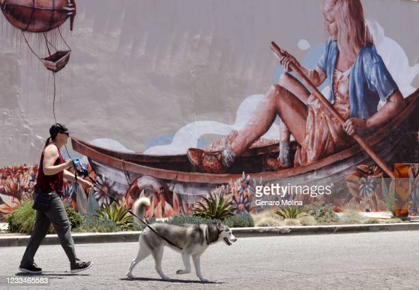 Jen and her dog Biscuit walk past a mural by Australian artist Fintan Magee where no water is in sight for a rower on a very hot afternoon along...