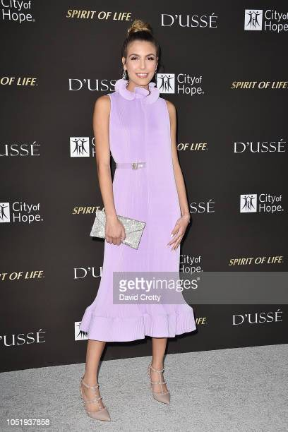 Jena Rose attends the 2018 City Of Hope Gala at Barker Hangar on October 11 2018 in Santa Monica California