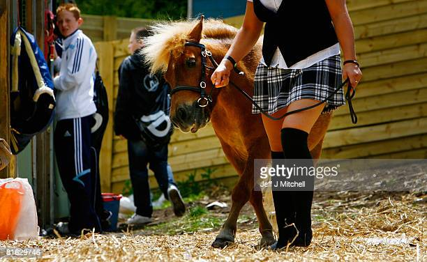 Jenna Wright from Cochno Stud in Clydebank walks her Shetland Pony at the Royal Highland Show June 19 2008 in EdinburghScotland The event is the...