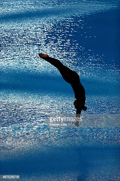 Jennifer Abel of Canada dives during the final of the Women's 3m Springboard on day two of the 2015 FINA/NVA Diving World Series at the Hamdan Sports...