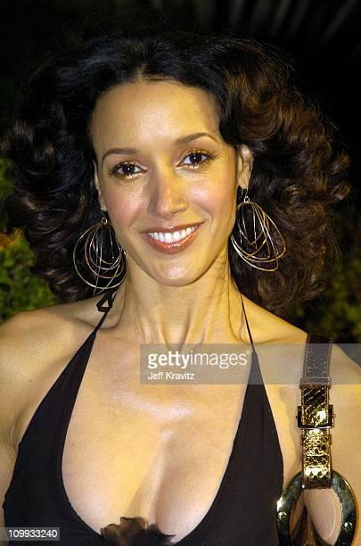 Jennifer Beals during 2004 Miramax Awards PreOscar Party at St Regis Hotel in Century City California United States