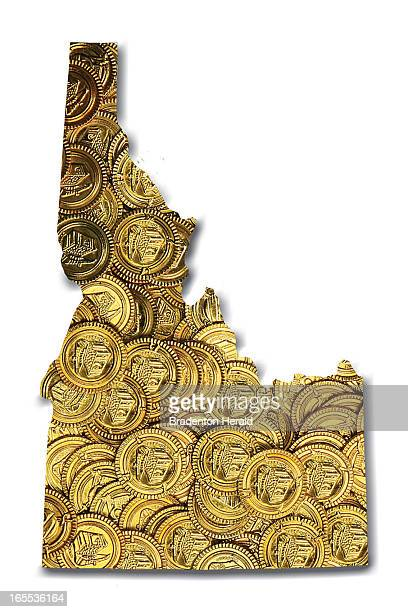 Jennifer Conklin illustration showing outline of state of Idaho filled with gold coins