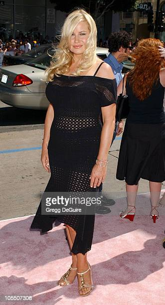 Jennifer Coolidge during 'A Cinderella Story' World Premiere Arrivals at Grauman's Chinese Theatre in Hollywood California United States