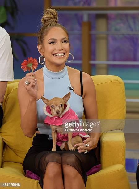 "Jennifer Lopez on the set of Despierta America to promote film ""The Boy Next Door""at Univision Headquarters on January 13, 2015 in Miami, Florida."