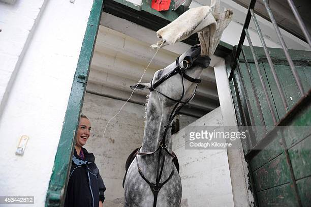 Jennifer Maguire and Teddy who is a pure bred Irish Draught Horse and has won every category plays with a grooming towel before his competition...