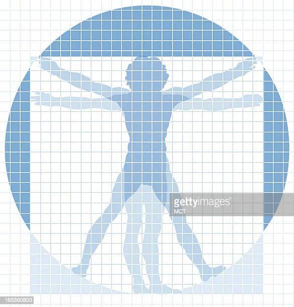 Jennifer Pritchard color illustration of Vitruvian Man in grid for health screening