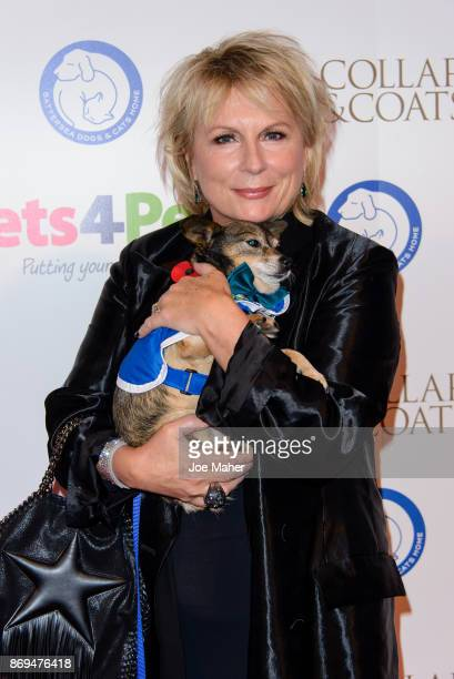 Jennifer Saunders attends the Collars and Coats Ball 2017 at Battersea Evolution on November 2 2017 in London England