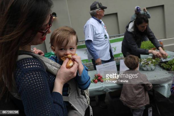 Jenny Jones of Chicago Ill feeds her son Atticus a hot dog at the opening of The Park The new Park at Wrigley opened on Monday April 10 showing off...