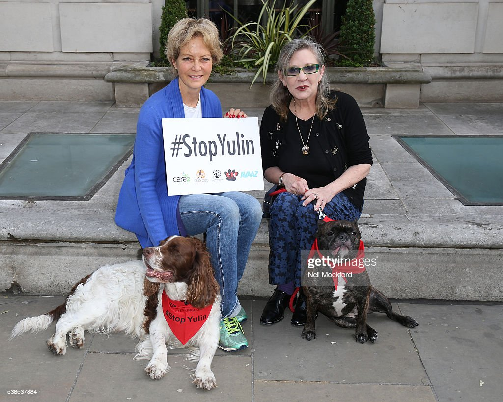 Jenny Seagrove and Carrie Fisher attend a photocall as campaigners submit an 11 million signature petition calling for an end to China's Yulin dog meat festival at Chinese Embassy London on June 7, 2016 in London, England.