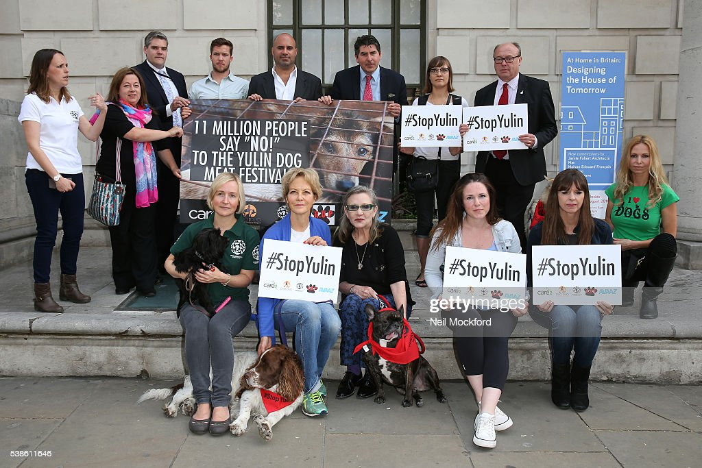 Jenny Seagrove, Carrie Fisher, Sandi Thom, Victoria Stilwell and Sandi Thom, Lucy Watson, Carrie Fisher, Marc Abraham, Jenny Seagrove and Anneka Svenska attend a photocall as campaigners submit an 11 million signature petition calling for an end to China's Yulin dog meat festival at Chinese Embassy London on June 7, 2016 in London, England.
